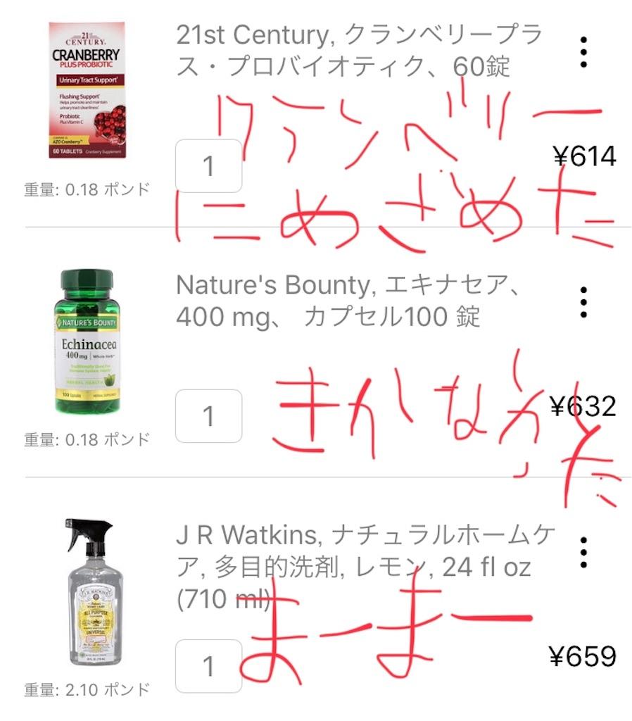 f:id:yuuko2002:20190603214733j:image