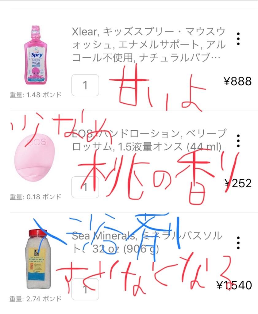 f:id:yuuko2002:20190603214740j:image