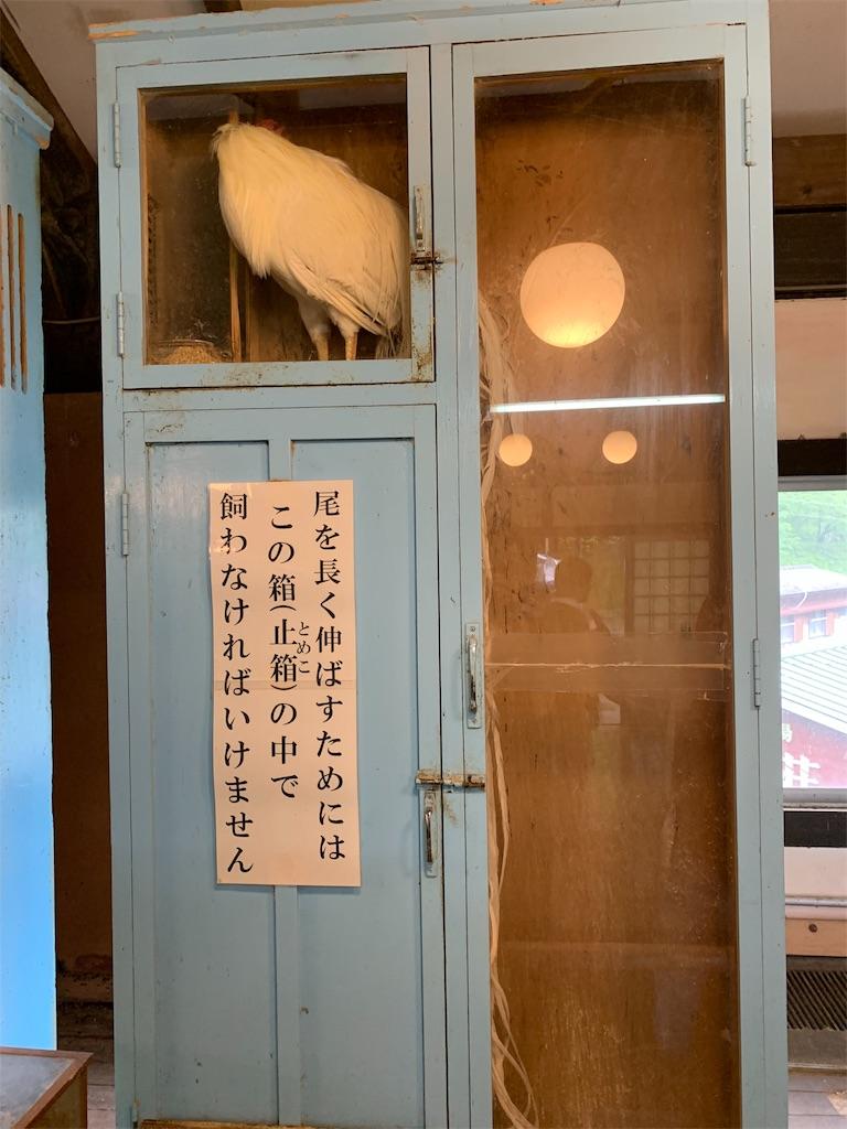 f:id:yuukun-11-hairdresser:20190510184131j:image