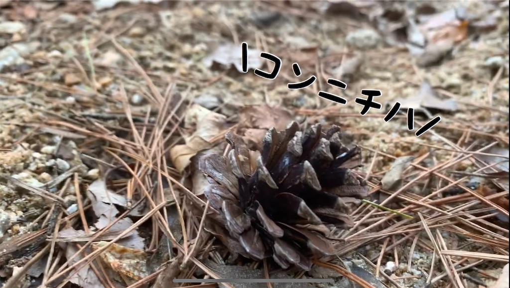 f:id:yuukun-11-hairdresser:20200310175103j:image