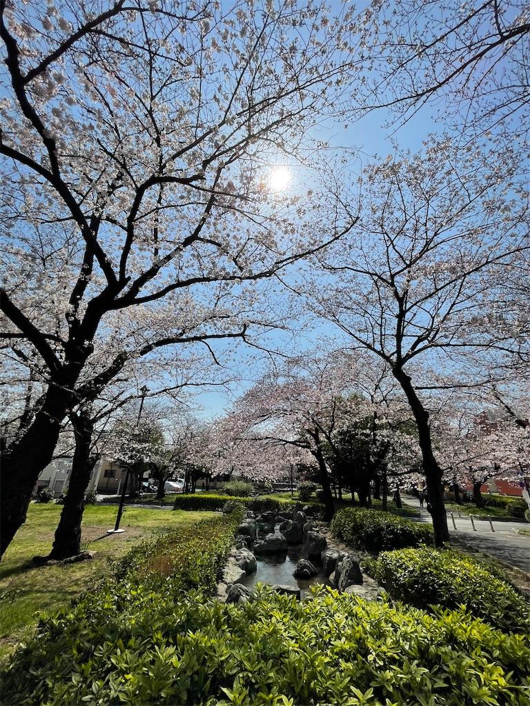f:id:yuumicoyam:20210326191838j:image