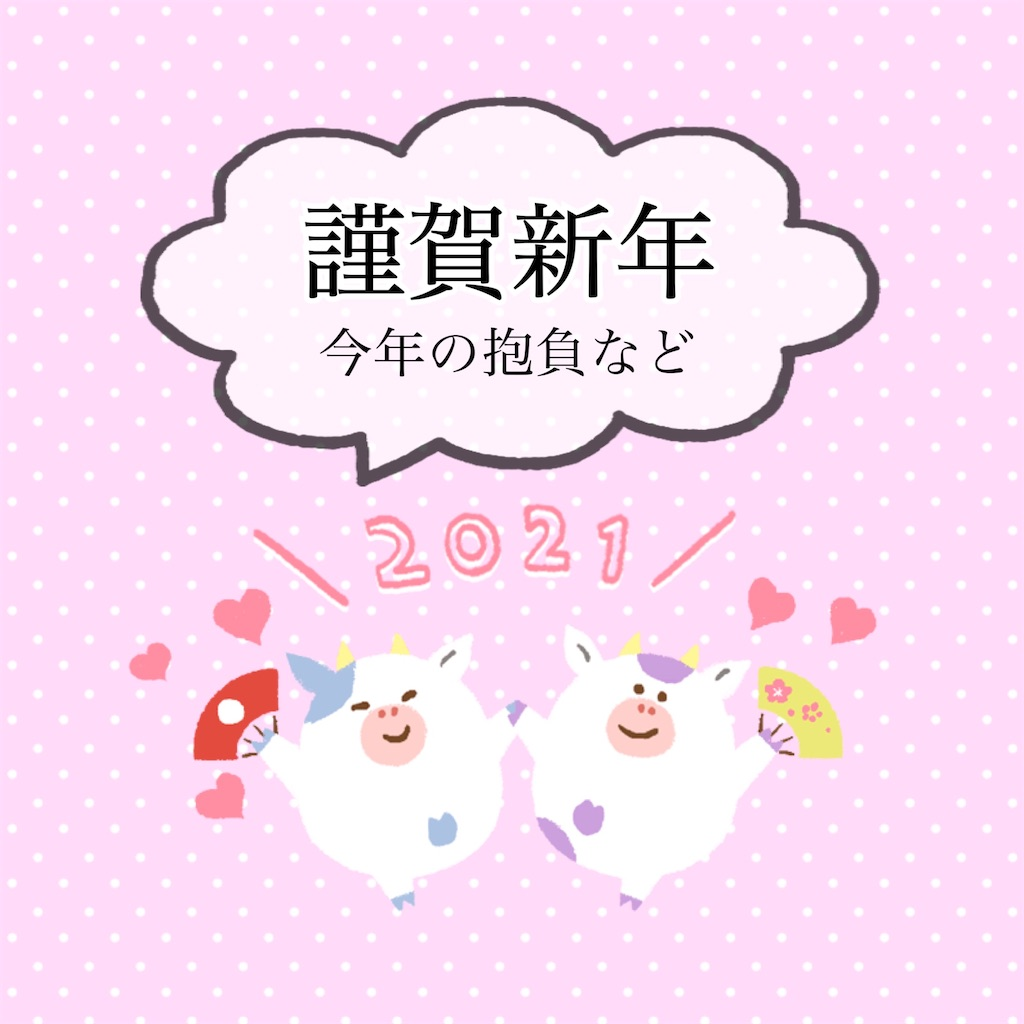 f:id:yuumin358:20210101232626j:image
