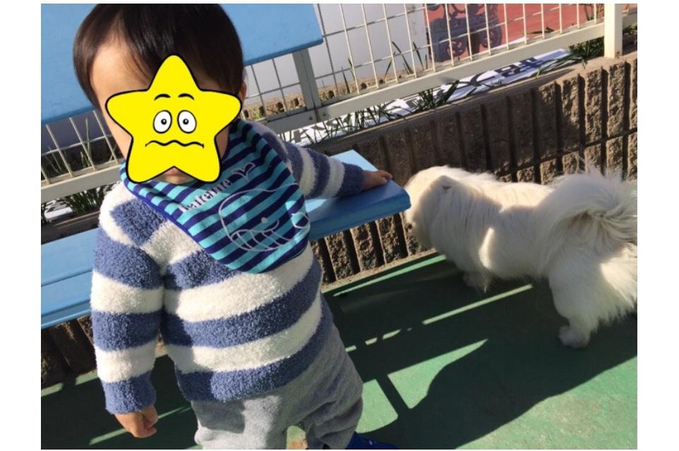 f:id:yuurincheee1117:20171118230556j:plain