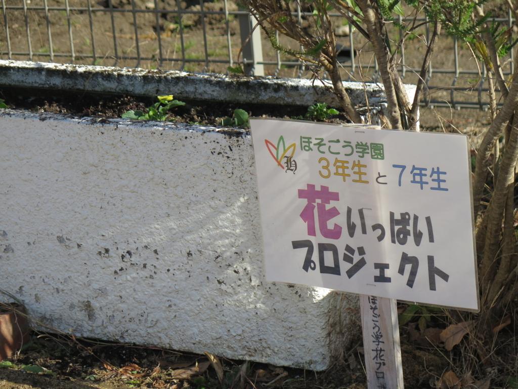 f:id:yuuseiyouchien:20171212112927j:plain