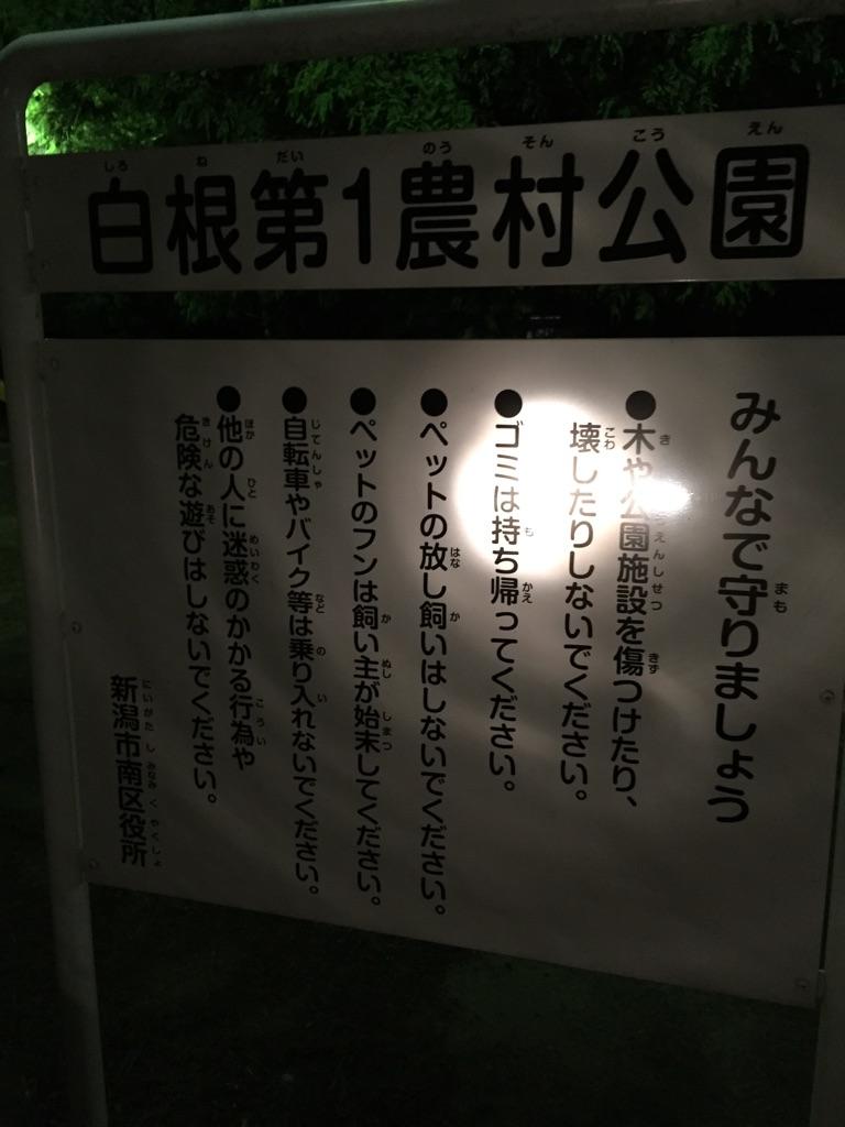 f:id:yuusukehoshino2015:20160731174417j:plain