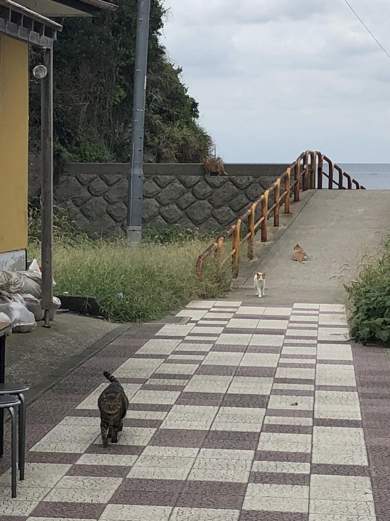f:id:yuuta0308:20180912102124j:plain