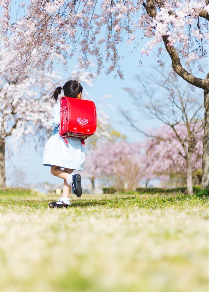 f:id:yuuta0605:20190208004752j:image