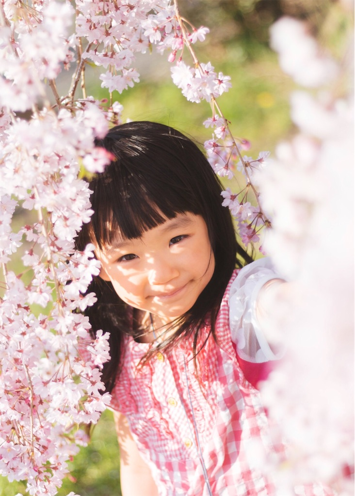 f:id:yuuta0605:20190327134736j:image
