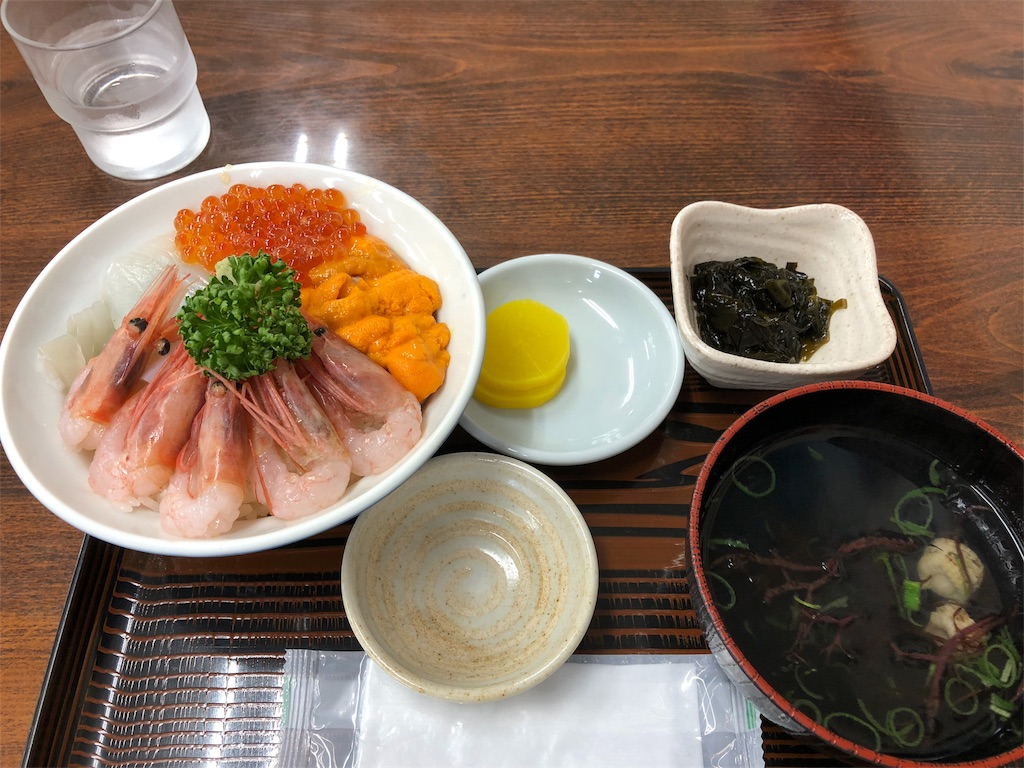 f:id:yuutakami:20180710110330j:image