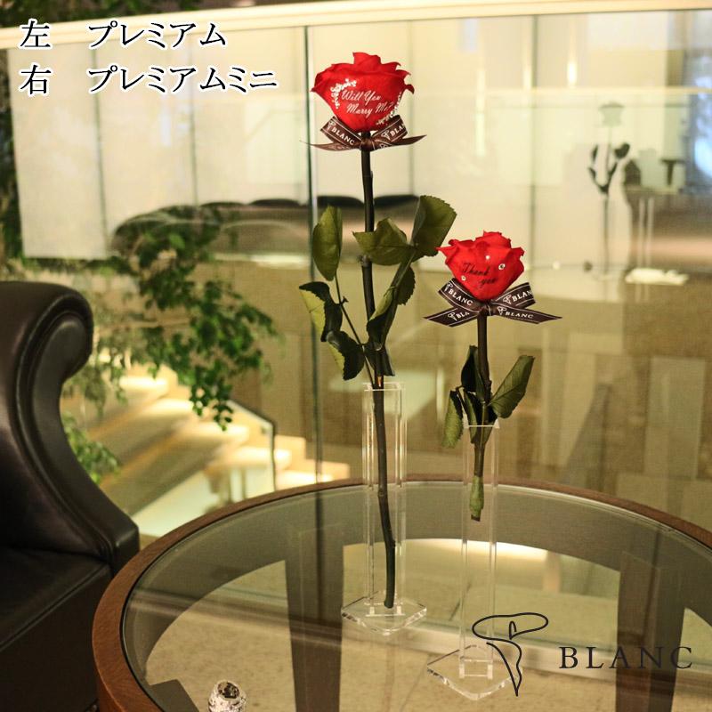 f:id:yuutanman2005:20171114175351j:plain