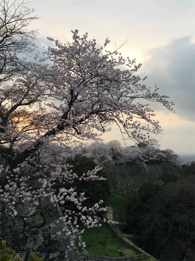 f:id:yuuto-idaira:20170410141246j:image