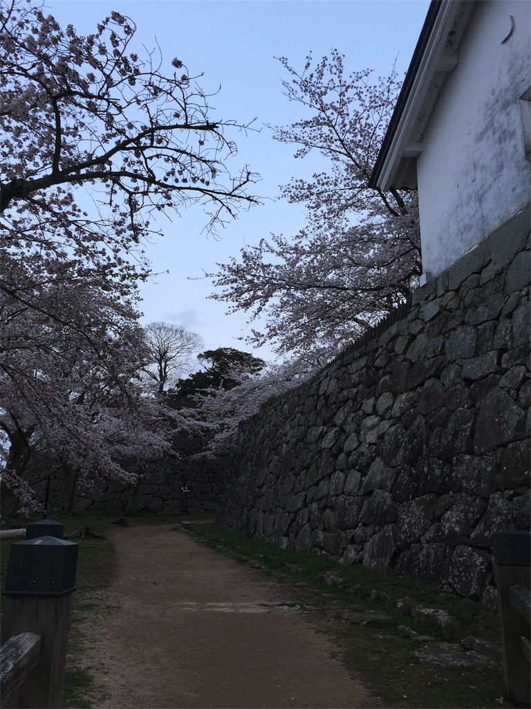 f:id:yuuto-idaira:20170410141308j:image
