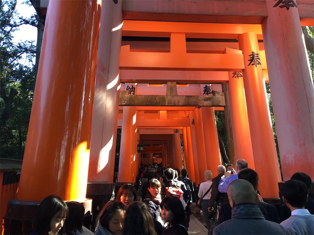 f:id:yuuto-idaira:20191116224730j:image
