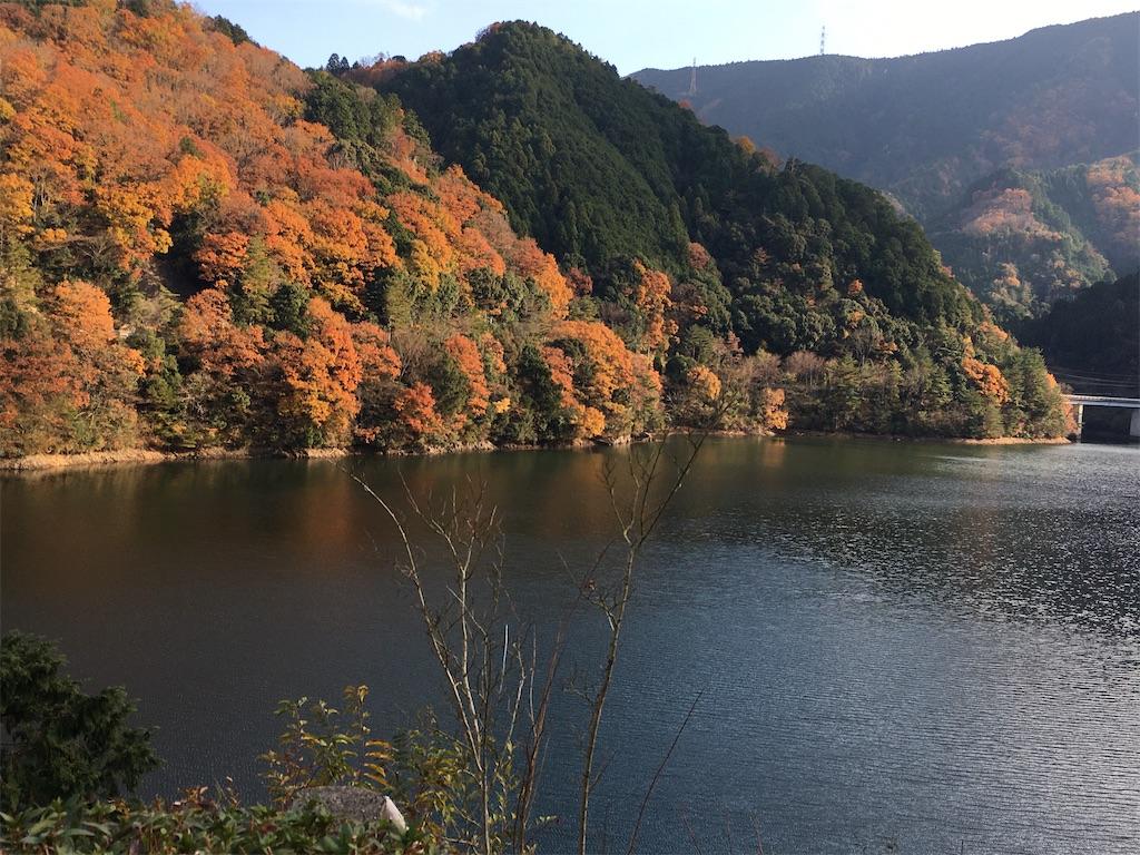 f:id:yuuto-idaira:20191216220446j:image