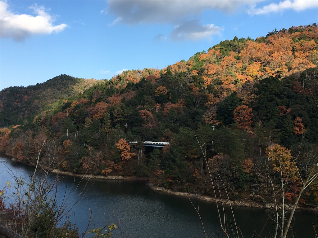f:id:yuuto-idaira:20191216220504j:image