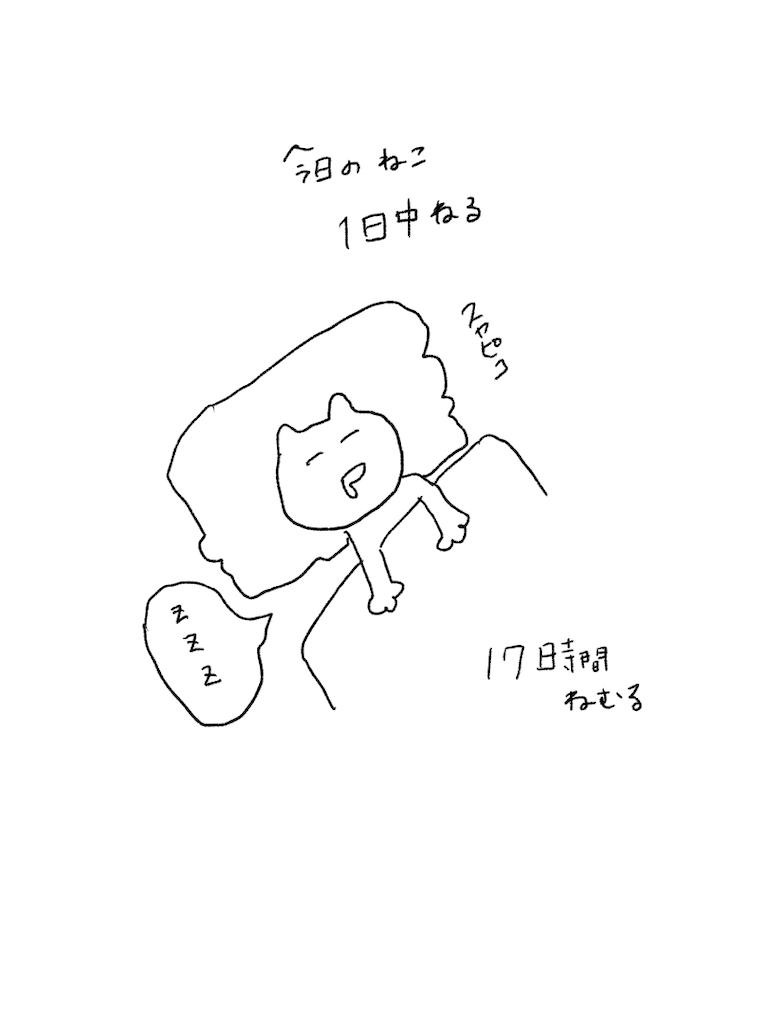 f:id:yuutunaneko:20191206184034p:image