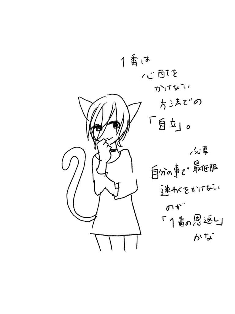 f:id:yuutunaneko:20191206224922p:image