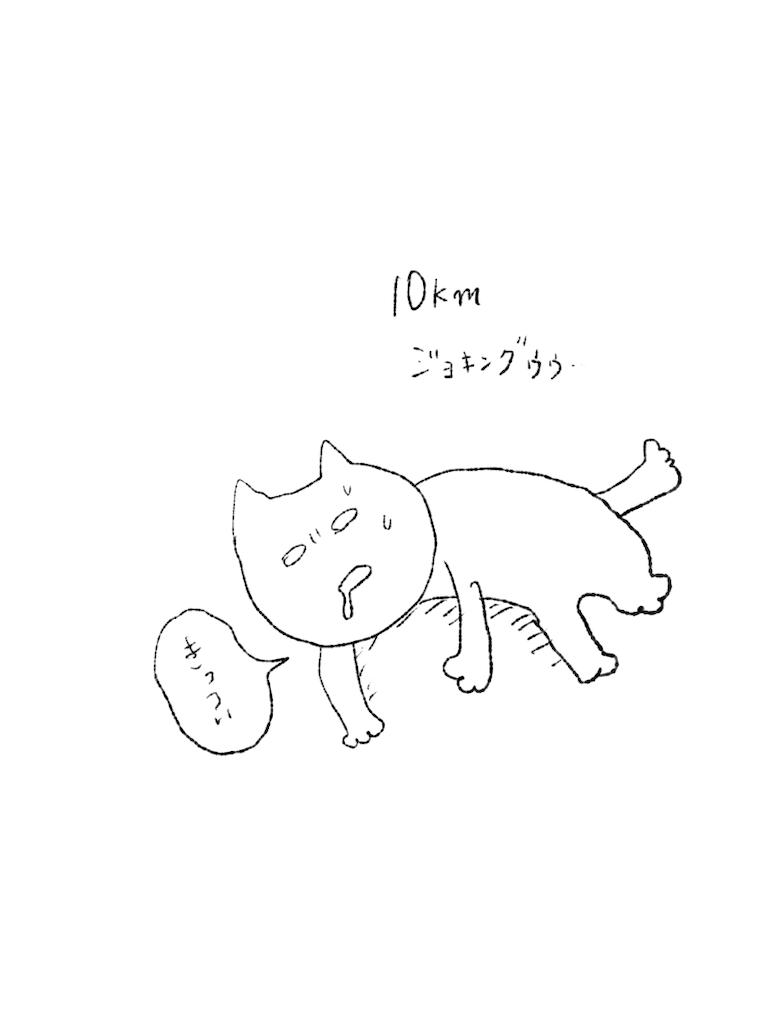 f:id:yuutunaneko:20191225191811p:image