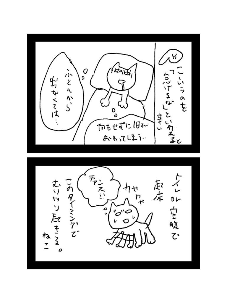 f:id:yuutunaneko:20200101144530p:image