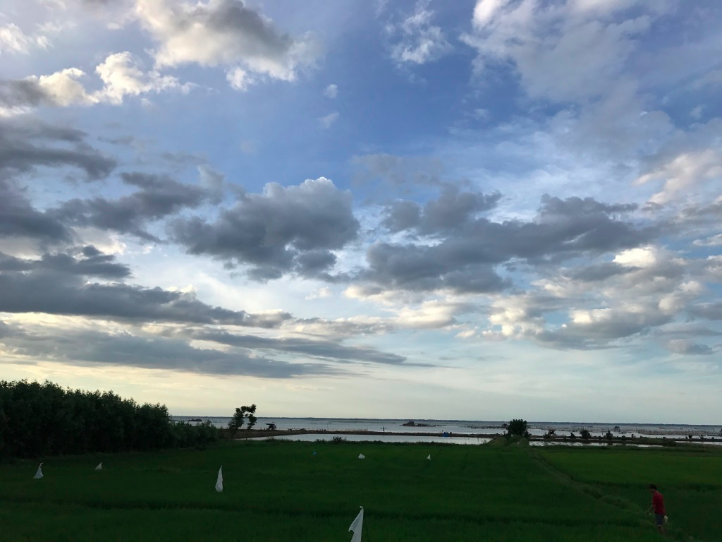 f:id:yuuuuuriii:20170709195613p:plain