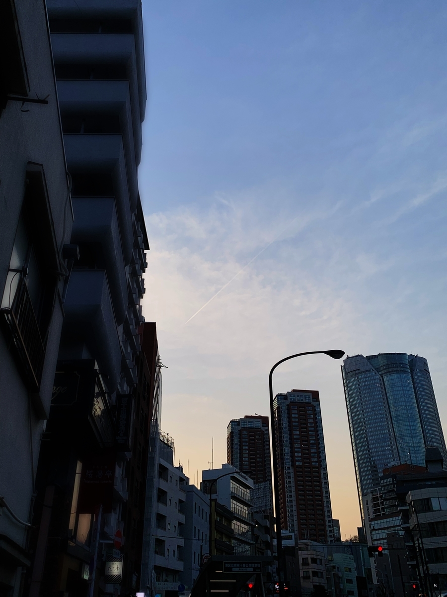 f:id:yuuuuuriii:20190327225305j:plain