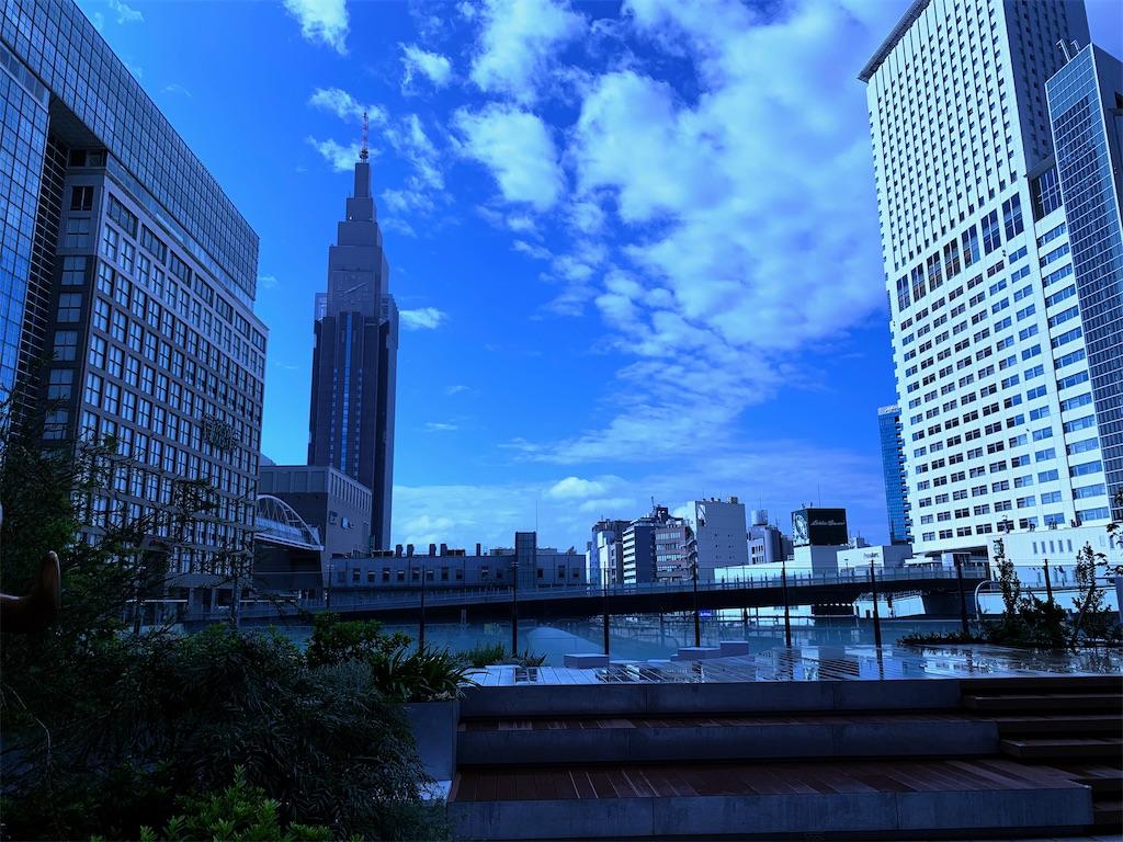 f:id:yuuuuuriii:20200801201146j:image