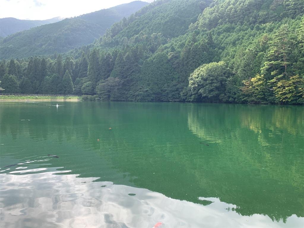 f:id:yuuuuuriii:20200911201629j:image