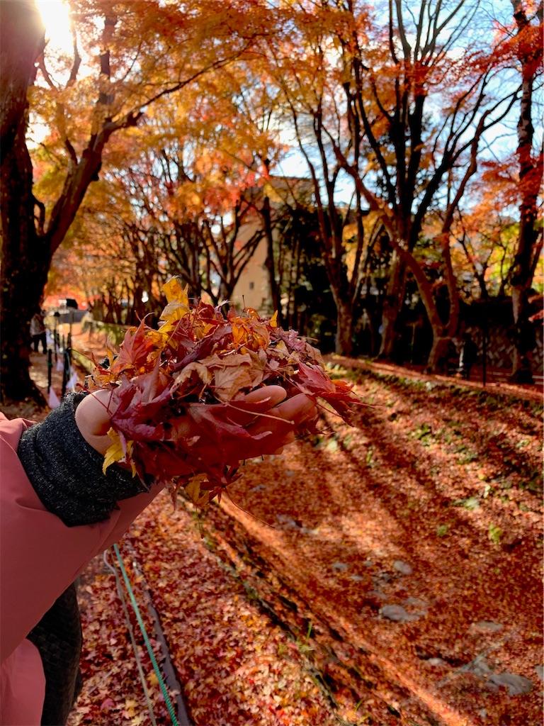 f:id:yuuuuuriii:20201122231626j:image