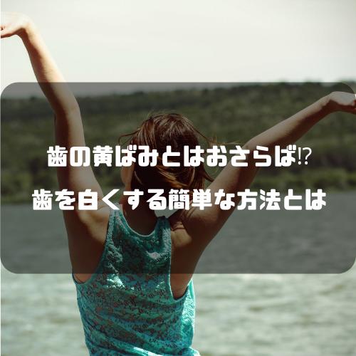 f:id:yuuya11441114:20190219220602p:plain