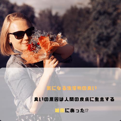 f:id:yuuya11441114:20190224012310p:plain