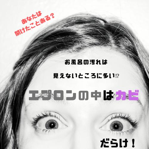 f:id:yuuya11441114:20190227214649p:plain
