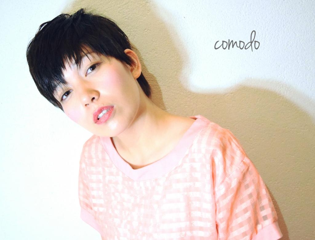 f:id:yuuyamaeda:20160715105453j:plain