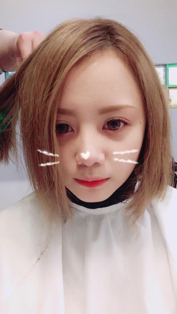 f:id:yuuyamaeda:20161127191440j:plain