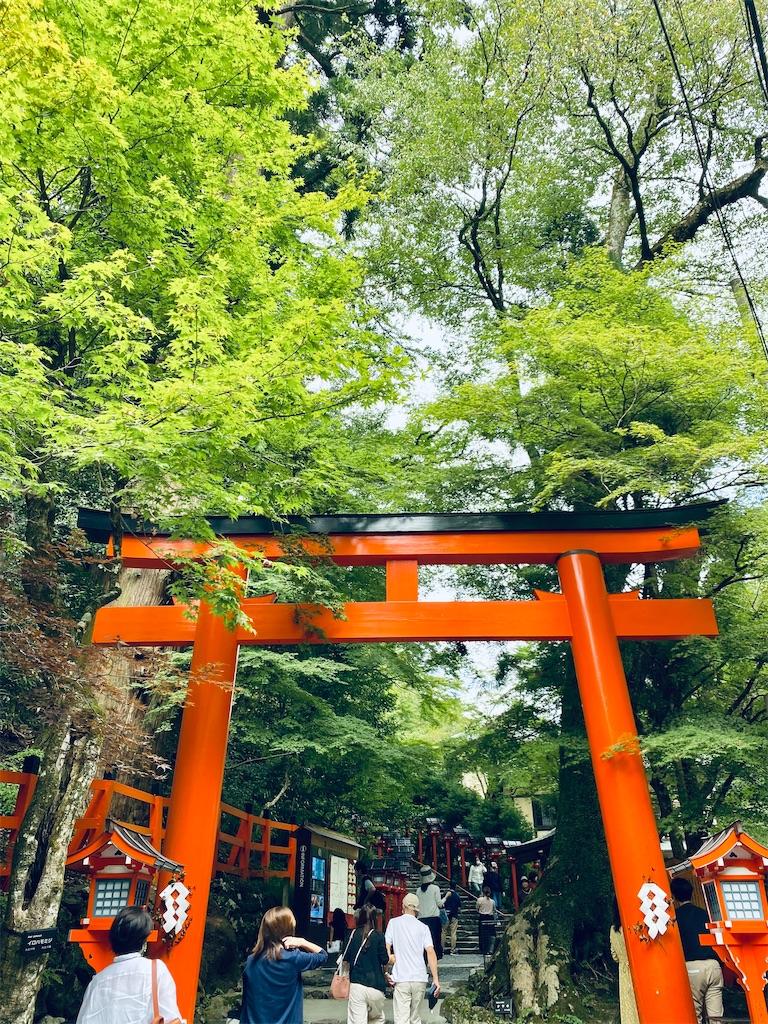 f:id:yuuyuii:20200927205146j:image