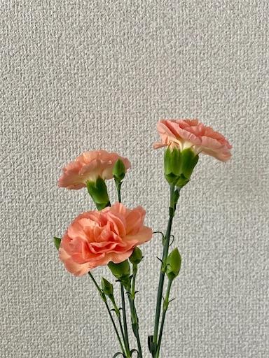 f:id:yuuyuii:20210516135410j:image