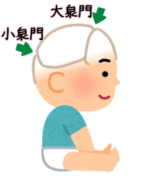 f:id:yuuyuulife:20191204183438j:plain
