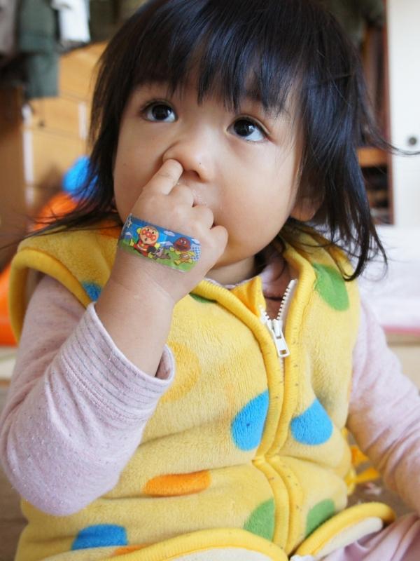f:id:yuwamama2010:20121120150559j:image:w360