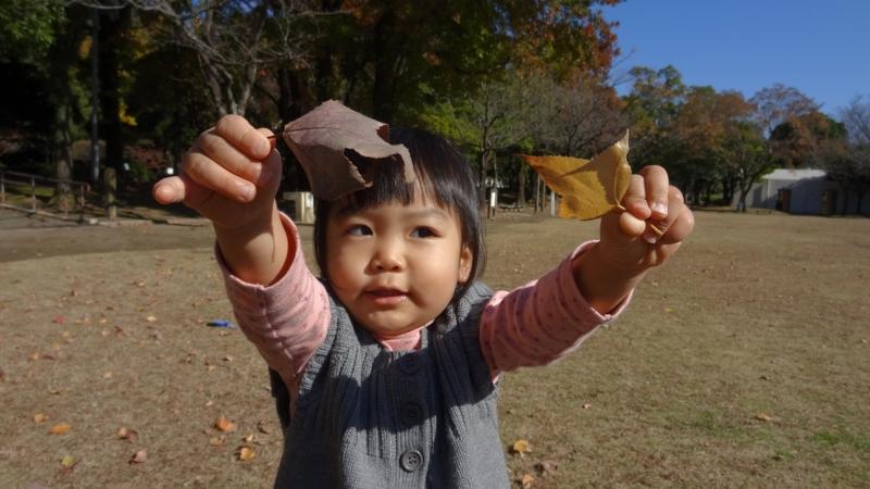 f:id:yuwamama2010:20121204122446j:image:w360