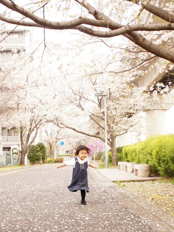 f:id:yuwamama2010:20130324124316j:image:w360