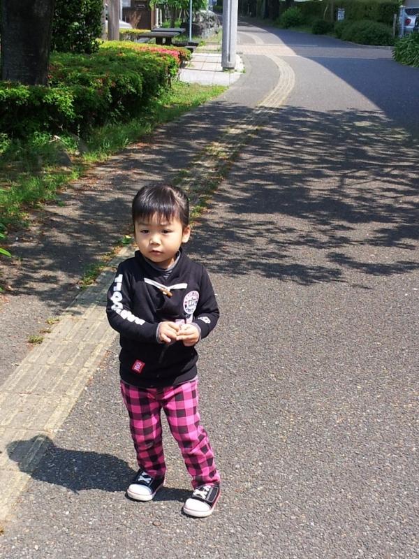 f:id:yuwamama2010:20130412105446j:image:w360