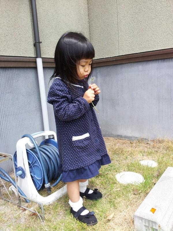 f:id:yuwamama2010:20130516112528j:image:w360
