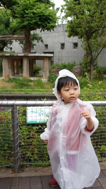 f:id:yuwamama2010:20130519130436j:image:w360