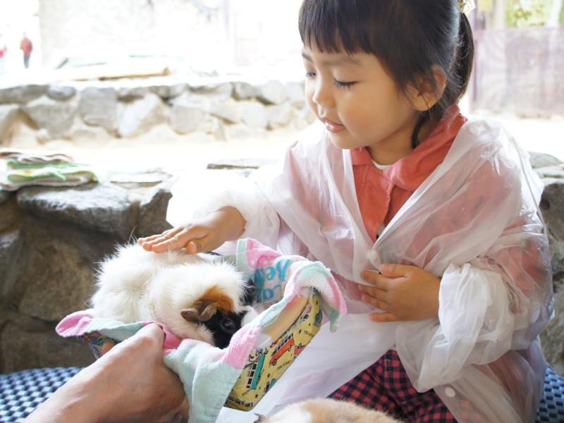 f:id:yuwamama2010:20130519152531j:image:w360