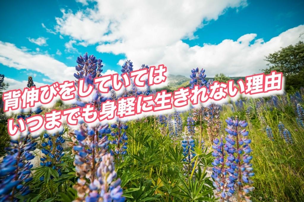 f:id:yuya0608amezawa:20180215145901j:plain