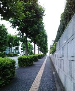 f:id:yuyakereiko:20190609204114j:plain