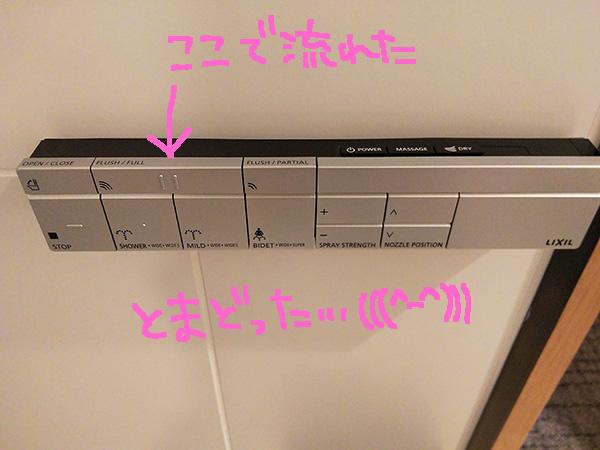 f:id:yuyakoyu:20180406075007j:plain