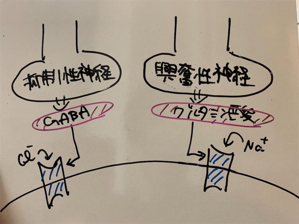 f:id:yuyamakun:20190603180230j:image