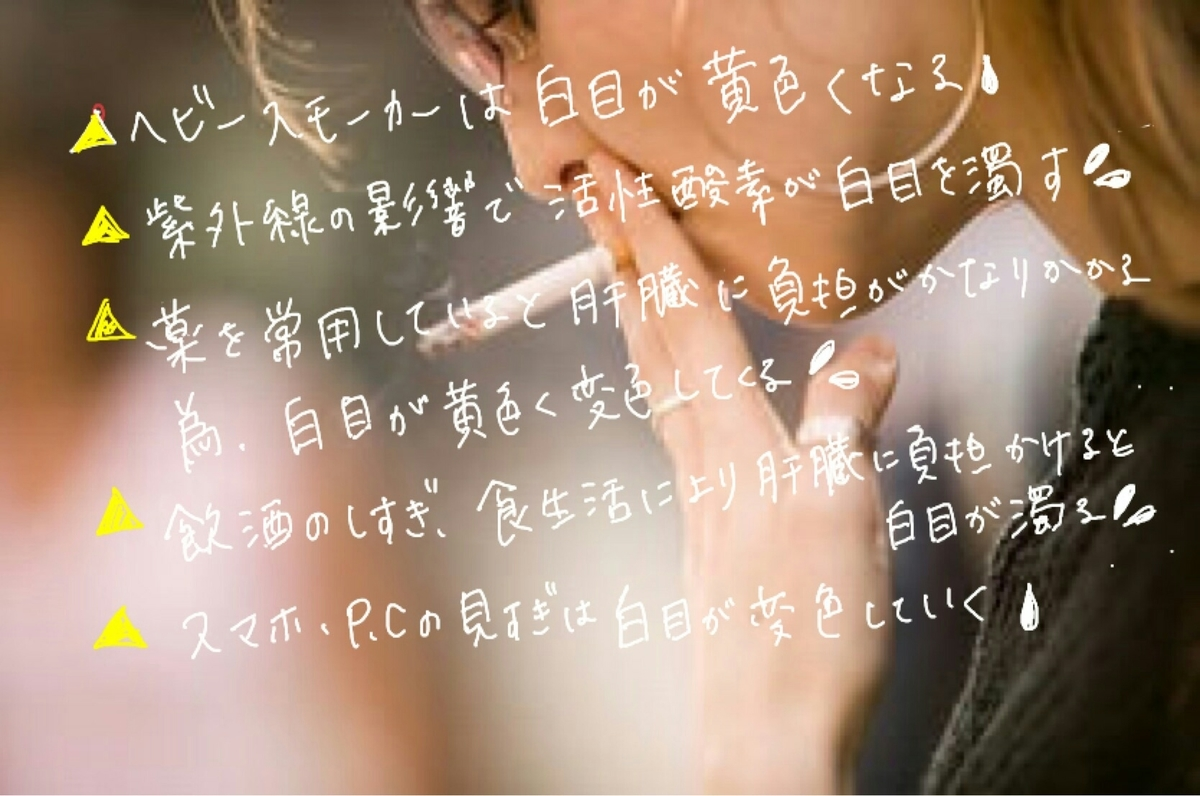 f:id:yuyu-s:20190401191240j:plain