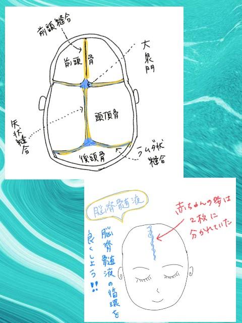 f:id:yuyu-s:20210206105541j:image