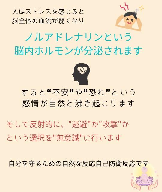 f:id:yuyu-s:20210513234826j:image